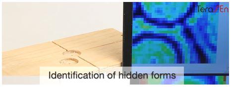 Terahertz image of wooden block