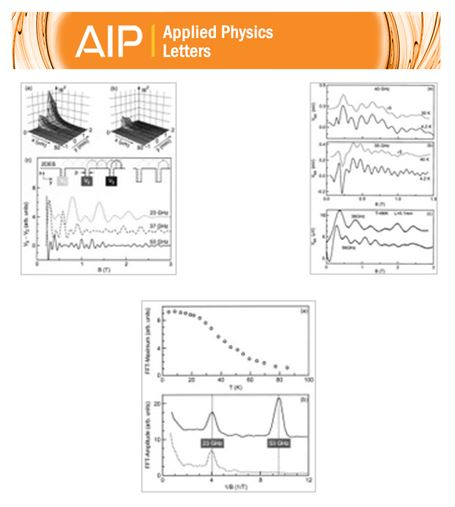 017-publication_Appl. Phys. Lett. 86, 044101