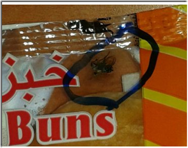 Fly in the bun bag